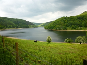 Ladybower Reservoir - the Peak District